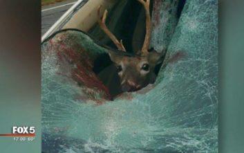 Η τρομακτική εμπειρία μιας οδηγού σε αυτοκινητόδρομο