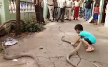 Δείτε ένα τρίχρονο αγόρι να παίζει με τα δύο… φίδια του