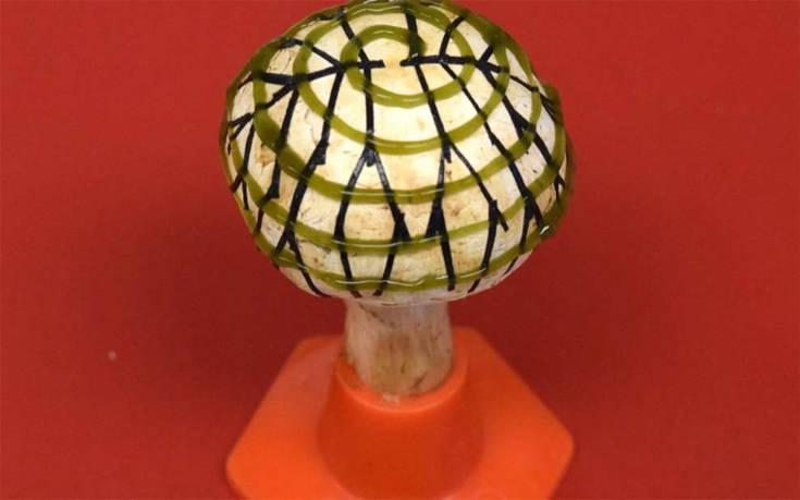 Το βιονικό μανιτάρι που μπορεί να παράγει ηλεκτρική ενέργεια