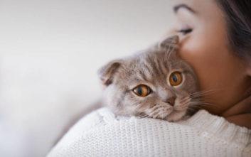 Την έβαλε να διαλέξει ανάμεσα σε εκείνον και τις γάτες της, εξοργίζοντας το διαδίκτυο