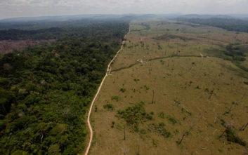 Δάσος όσο ένα εκατομμύριο γήπεδα ποδοσφαίρου χάθηκε στον Αμαζόνιο