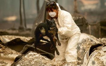 «Χτενίζουν» τα καμμένα στην Καλιφόρνια για θύματα και αγνοούμενους