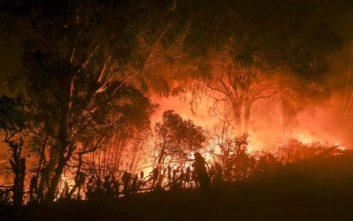 Αγωνία για 35 αγνοούμενους στις φωτιές στην Καλιφόρνια