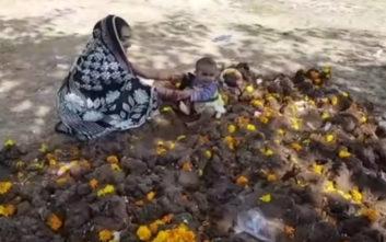 Γονείς βάζουν τα μωρά πάνω σε κόπρανα αγελάδων