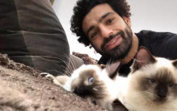 Ο Μο Σαλάχ αντιδρά στην εξαγωγή γατών και σκύλων από την Αίγυπτο
