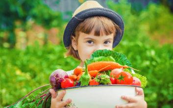 Ο Φρεσκούλης προσφέρει μια «αγκαλιά» φρούτα και λαχανικά