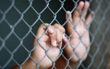 Φωτίου: Οι 30 έχουν ελευθερωθεί από τα κλουβιά στα Λεχαινά