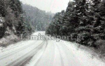 Ξεκίνησε η επέλαση του χιονιά στη Φθιώτιδα