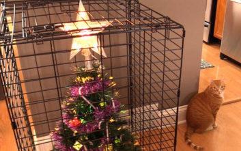 Χριστουγεννιάτικα δώρα μόλις άρχισαν να βγαίνουν