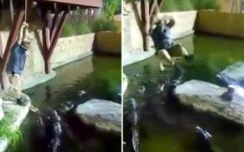 Οι παλαβομάρες τον έφεραν μέσα στη λίμνη με τους… αλιγάτορες