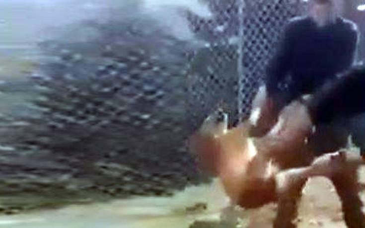 Καταδικάστηκαν οι στρατιώτες που πέταξαν σκύλο σε γκρεμό