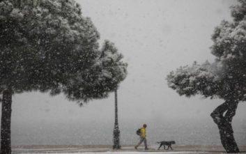 Κλειστά και αύριο όλα τα σχολεία στον νομό Θεσσαλονίκης