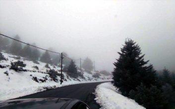 Προβλήματα στην περιφέρεια Πελοποννήσου λόγω χιονοπτώσεων και παγετού
