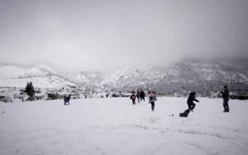 Καλύφθηκε από πυκνό χιόνι η Πάρνηθα
