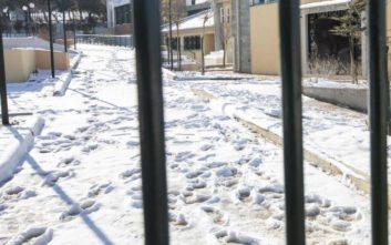 Κλειστά σχολεία αύριο σε δήμους της δυτικής Μακεδονίας