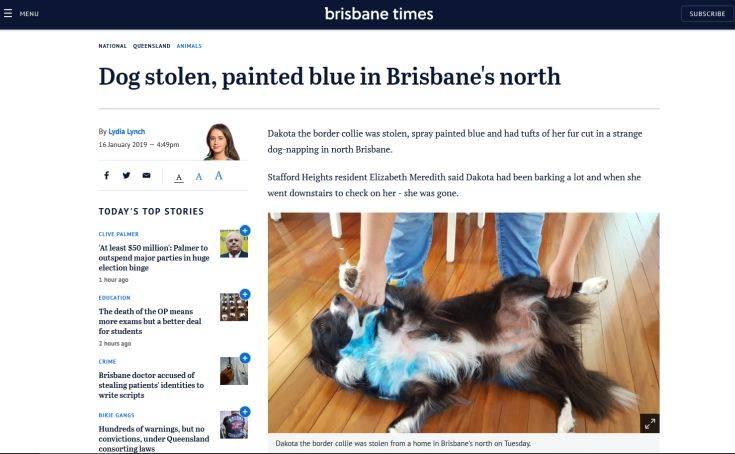 Βρήκε τον σκύλο που της έκλεψαν αλλά ήταν βαμμένος μπλε