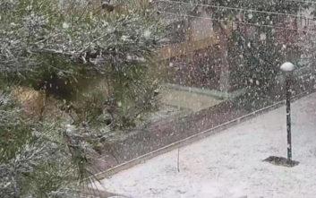 Δείτε φωτογραφίες και βίντεο από τη χιονισμένη Θεσσαλονίκη
