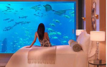 Υποβρύχιες φωτογραφίες από πολυτελή ξενοδοχεία που κόβουν την ανάσα