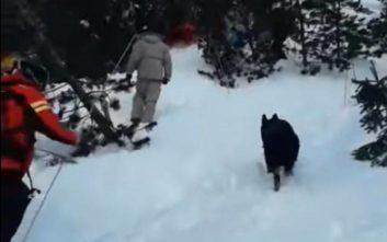Δύο νεκροί από χιονοστιβάδα στο Μπάνσκο