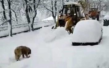 Αποκλεισμένα χωριά με ένα μέτρο χιόνι στη Φθιώτιδα