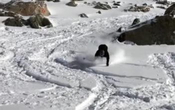 Ήθελαν οπωσδήποτε να κάνουν σκι αλλά κάτι δεν πήγε καλά