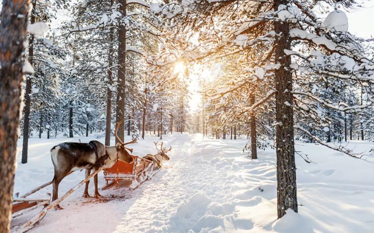 Κυνηγώντας το χειμώνα στη Λαπωνία