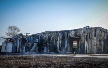 Η επόμενη ημέρα αποκάλυψε το μέγεθος της καταστροφής στο εργοστάσιο ξυλείας
