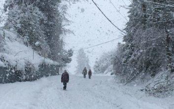Εγκλωβισμένος από το χιόνι για εβδομάδες βρέθηκε ένας άνδρας στον Καναδά