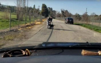 Η αλήθεια γύρω από το βίντεο με την εγκατάλειψη ενός σκύλου από τον «ιδιοκτήτη» του