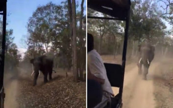 Εξαγριώθηκε με τους τουρίστες ο ελέφαντας και τους πήρε στο κυνήγι