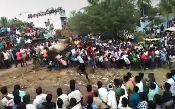 Αφηνιασμένος ταύρος προκαλεί πανδαιμόνιο σε θρησκευτική εκδήλωση