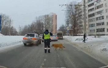 Ο αστυνομικός που σταμάτησε την κυκλοφορία για να περάσει ένας σκύλος
