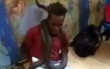Τύλιξαν φίδι γύρω από τον λαιμό του για να τον ανακρίνουν