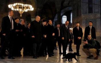Η μαύρη γάτα που υποδέχθηκε τον Τσίπρα στην Αγία Σοφία