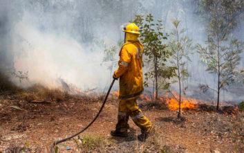 Μεγάλες δασικές πυρκαγιές μαίνονται στη νότια Αυστραλία