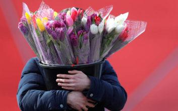 Μήνυμα για την Παγκόσμια Ημέρα της Γυναίκας: Μην ξεχνάμε τις Ρομά, τις κρατούμενες, όσες έχουν υποστεί βία