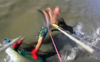 Άνδρας δέχθηκε επίθεση από σκύλο την ώρα που έκανε kite surfing