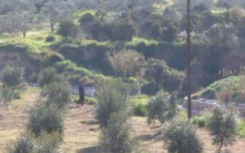 Αναβρασμός στον Σολωμό Κορινθίας, Ρομά έχουν μαζευτεί κοντά στο σπίτι του δράστη