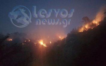 Μαίνεται η μεγάλη πυρκαγιά στο Πλωμάρι
