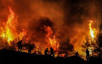 Το μπάρμπεκιου δυο φοιτητών στην Ιταλία κατέληξε σε τεράστια δασική πυρκαγιά