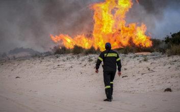 «Αυξημένος ο κίνδυνος πυρκαγιάς από τη σώρευση βιοαποβλήτων και κλαδεμάτων»