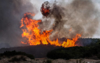 Μεγάλη φωτιά στο Τριφύλλι Αλεξανδρούπολης