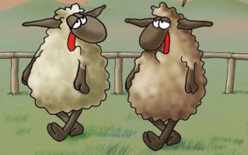 Αρκάς: Το σκίτσο για το Πάσχα και το «αργόστροφο» αρνί