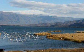 Οι παρεμβάσεις που θα γίνουν για να βελτιωθεί η εικόνα στη λίμνη Δοϊράνη