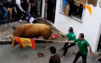 Με αίμα βάφτηκε το «κυνήγι των ταύρων» στην Ισπανία