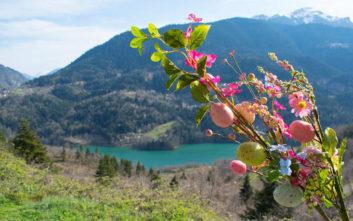 Η πρώτη εκτίμηση του Σάκη Αρναούτογλου για τον καιρό του Πάσχα