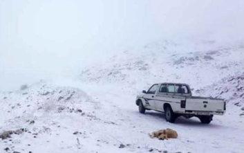 Καιρός: Τα χιόνια στα Ιωάννινα θύμισαν Ιανουάριο