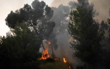 Φλέγεται το Ισραήλ, στέλνει βοήθεια η Ελλάδα