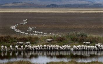 Η «ξηρασία ρεκόρ» στο Σίδνεϊ και οι περιορισμοί στην κατανάλωση νερού