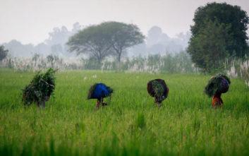 Το φτωχό χωριό όπου 400 άνθρωποι βρέθηκαν θετικοί στον ιό HIV